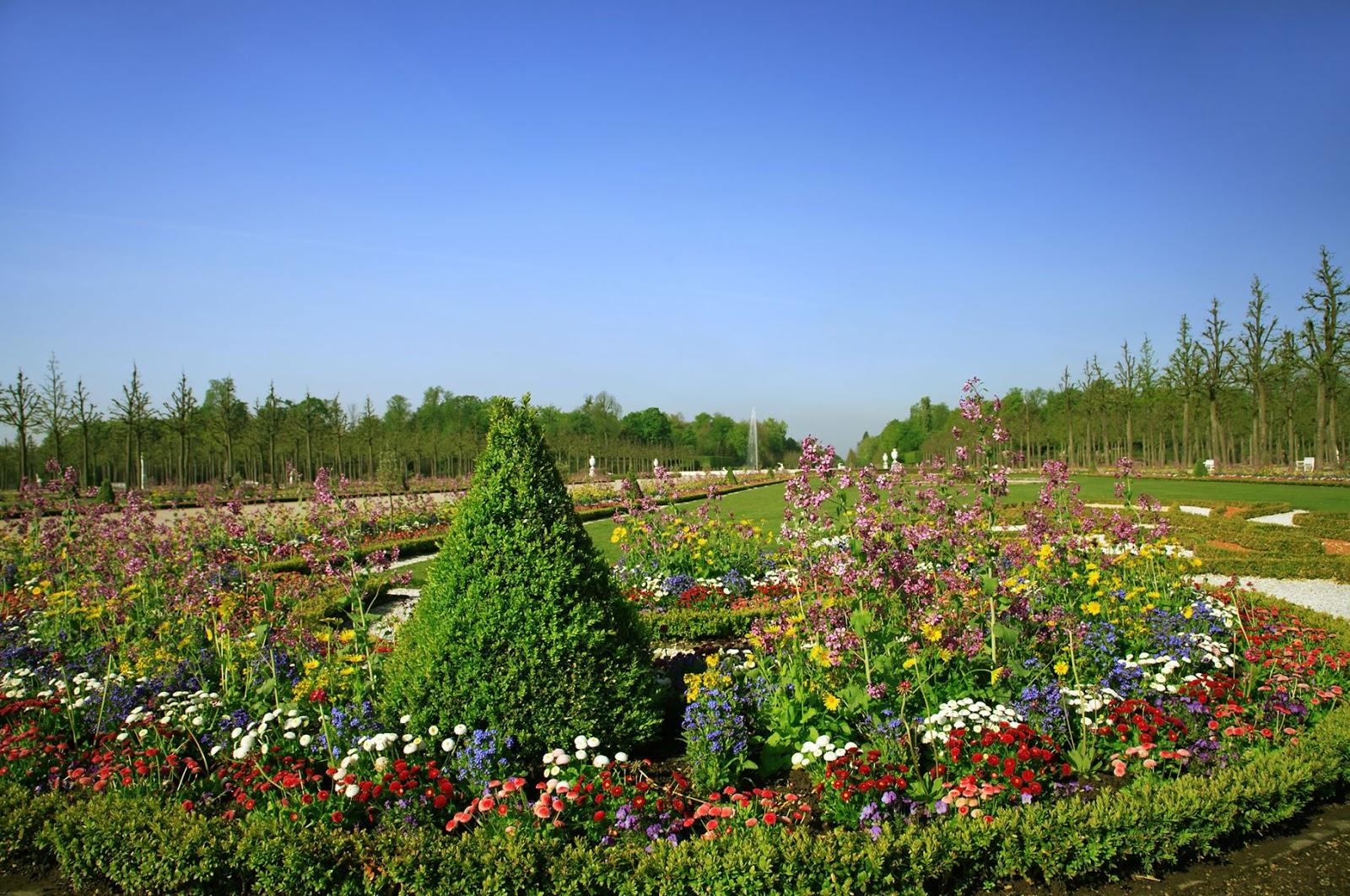 8 fotos de jardines plantas y flores en primavera for Plantas y jardines