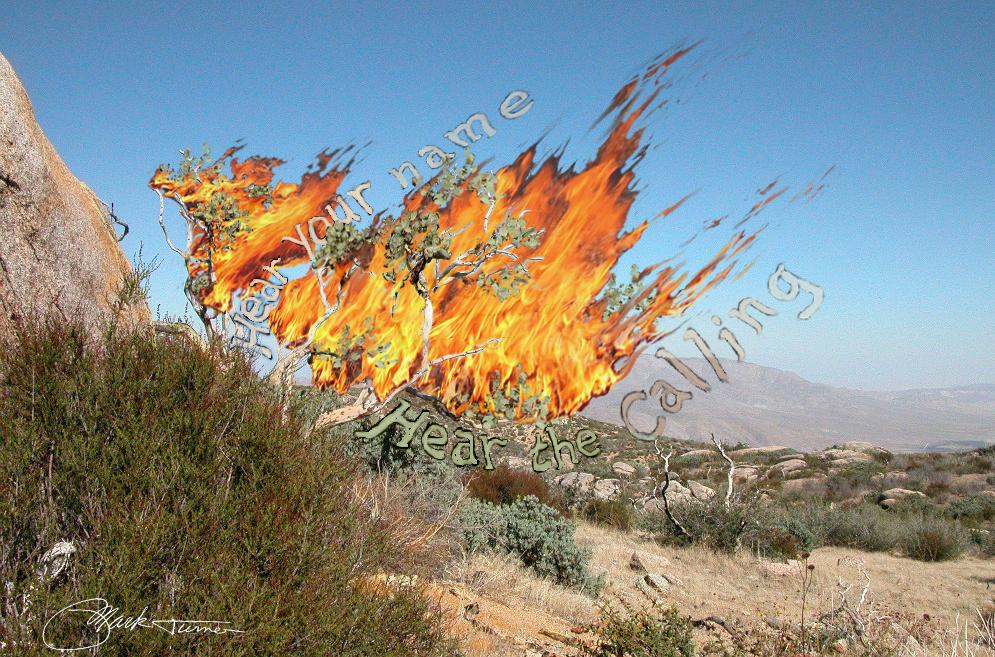 The Spirit In Art Burning Bush
