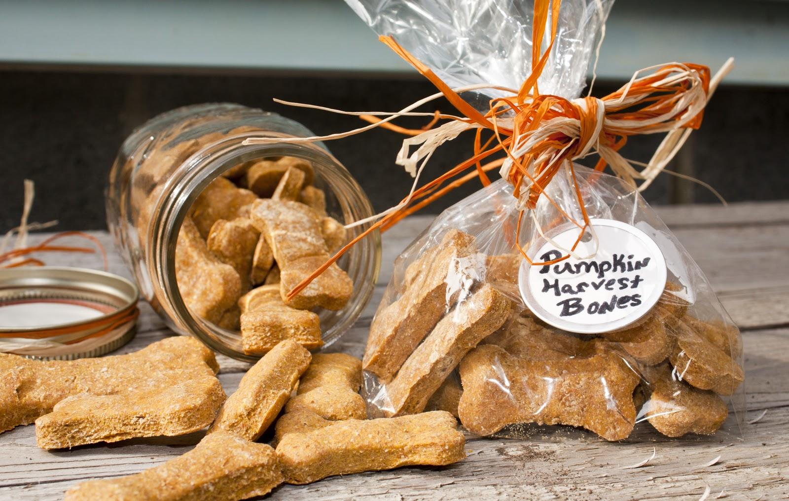 Dehydrated Canned Pumpkin Dog Treats
