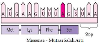gen bermutasi dari proses kesalahan penafsiran informasi