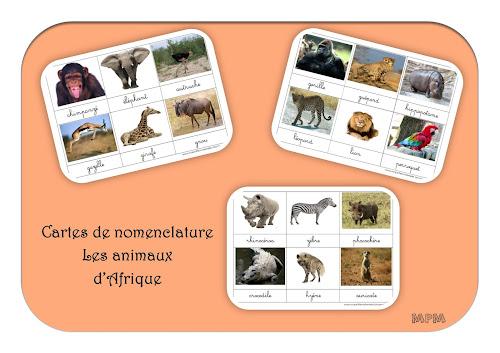 Cartes de nomenclature Montessori - Animaux d'Afrique