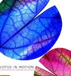 What is Lotus in Motion?