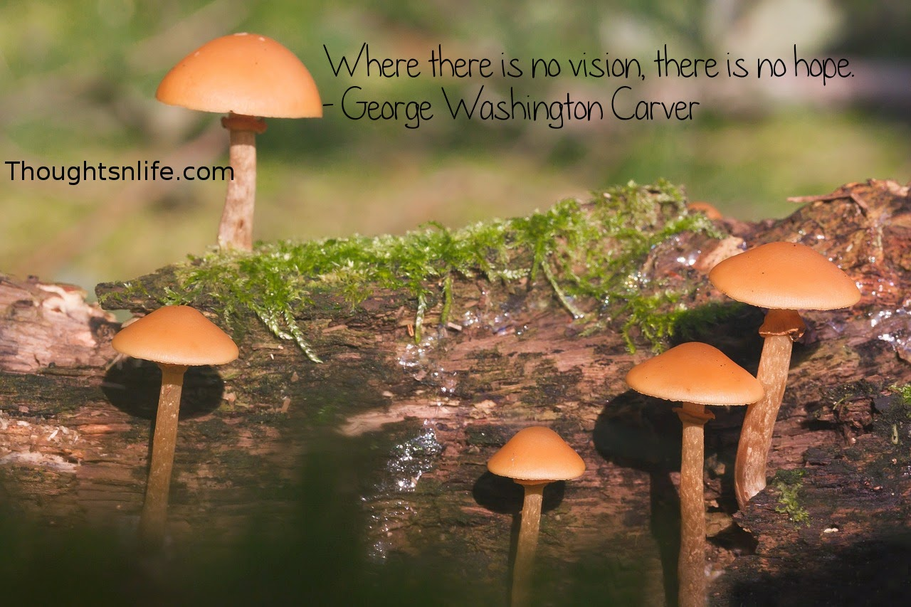 Thoughtsnlife.com: Where there is no vision, there is no hope. - George Washington Carver