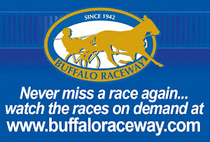 Buffalo Raceway Races On Demand