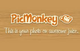 editor de imagens e fotos online