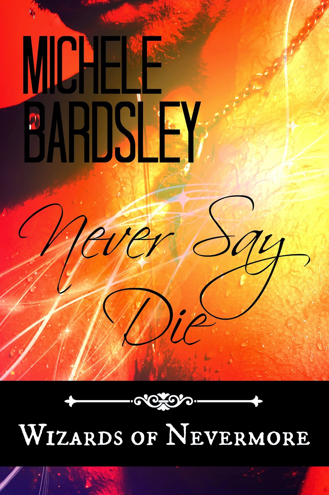 Never Say Die is Book 3 in the Wizards of Nevermore series by Michele Bardsley.