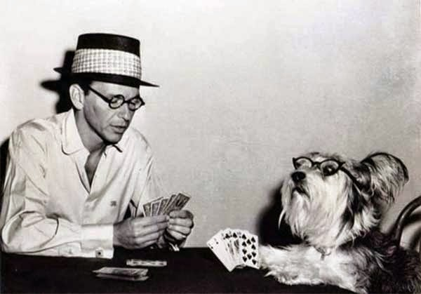 """David Wayne, Frank Sinatra y el perro co-protagonista de """"El solterón y el amor"""" (1955)"""