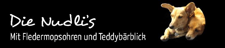 Die Nudlis - mit  Fledermopsohren u. Teddybärblick