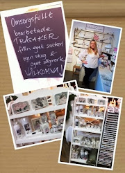 Läs mer om Stina & butiken