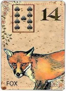 carta de lenormand 14 zorro