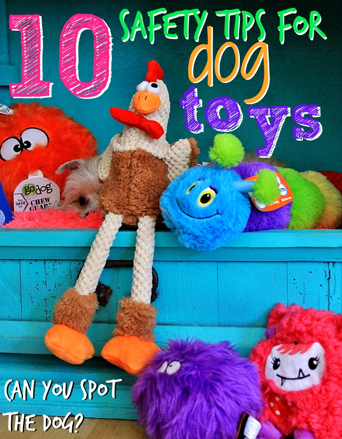 10 Safety Tips For Dog Toy Safety featuring GoDog toys with Chew Guard technology. (sp)