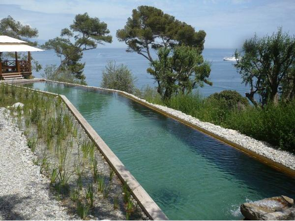 La utilización de las piscinas naturales en el diseño del jardín ...