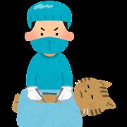 動物の手術のイラスト(猫)