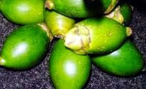 buah pinang, manfaat buah pinang bagi wanita, khasiat buah piang untuk wanita, manfaat buah pinang untuk kewanitaan