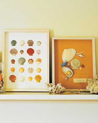 Create a Seashell Collection Box