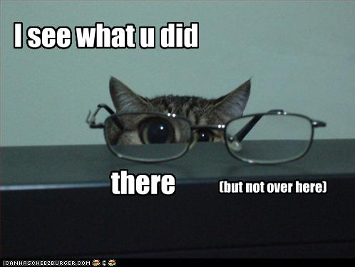 Lolcat lost glasses