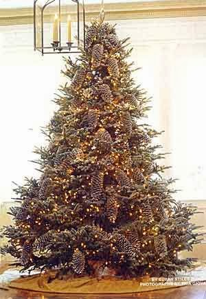 anyway here are some beautiful christmas trees first and after for fun some really bad christmas trees - Ugly Christmas Trees