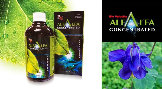 Bio Velocity Alfalfa, BVAlfalfa, Azniza Arshad, Kesihatan, Nyah-toksin, Sihat, BioVelocity,