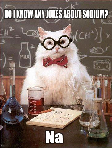 Scientific Cat Is So Scientific
