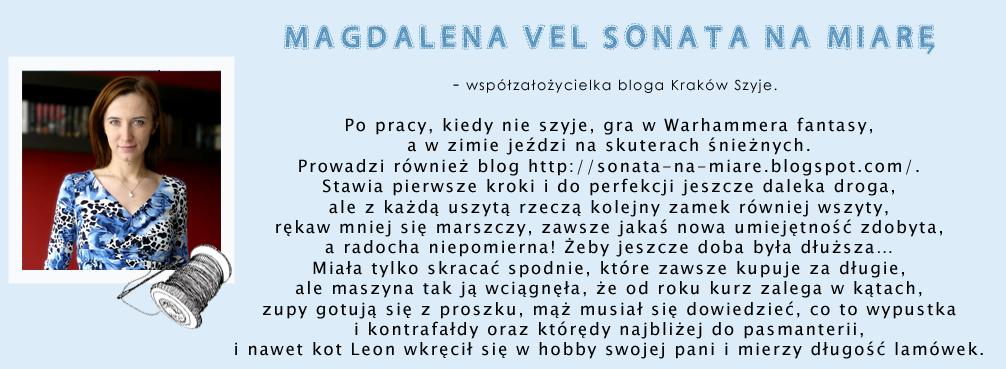 http://sonata-na-miare.blogspot.com/