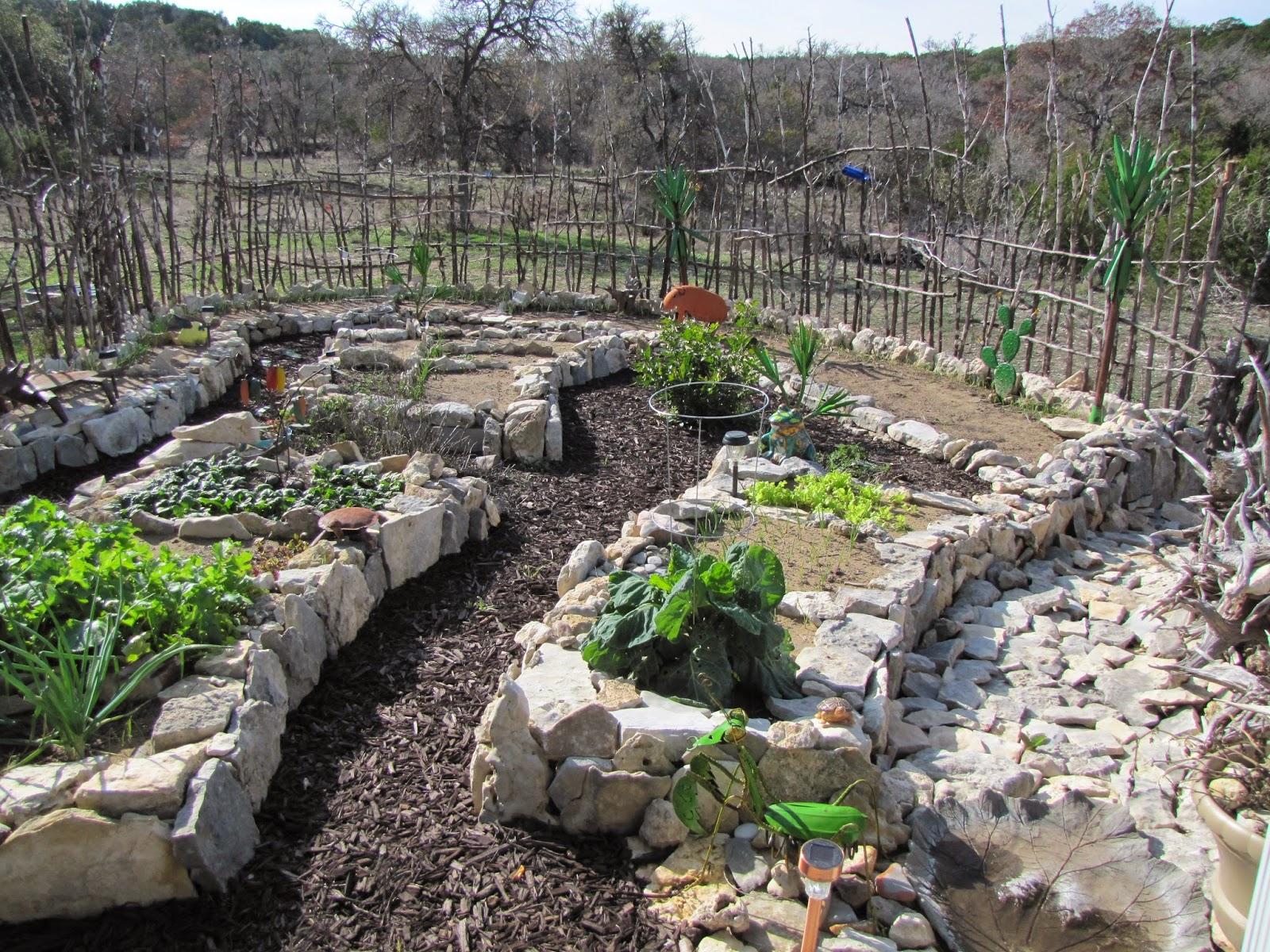 gardening at draco recent garden tour