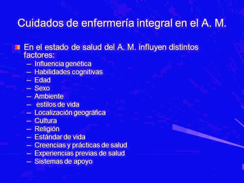 Asistencia integral al adulto mayor: MATERIAL DE APOYO PLAN DE ...