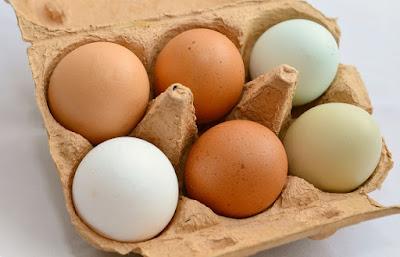 L'œuf, un trésor dans votre assiette