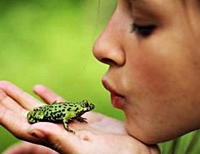 Cansá de besar ranas y ninguna con sorpresa (8)