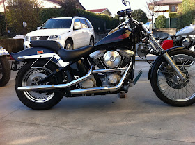 H-D SOFTAIL CUSTOM 1999