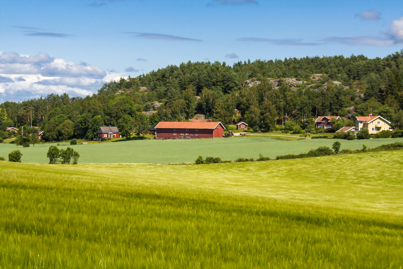 Yet Another Beautiful Swedish Landscape Une Page Photographie