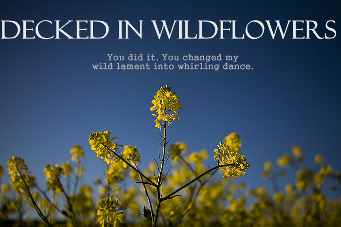 Decked in Wildflowers