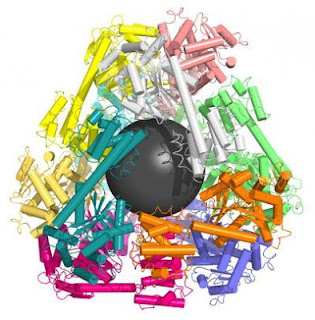 This is a molecular cage created by designing specialized protein puzzle pieces. Every color represents a separate protein, where cylindrical segments indicate rigid parts and ribbon-like segments indicate flexible parts of each protein chain. The grey sphere in the protein cage was placed there to indicate the empty space in the middle of the container and is not part of the molecular structure. (Credit: Todd Yeates, Yen-Ting Lai/UCLA Chemistry and Biochemistry)