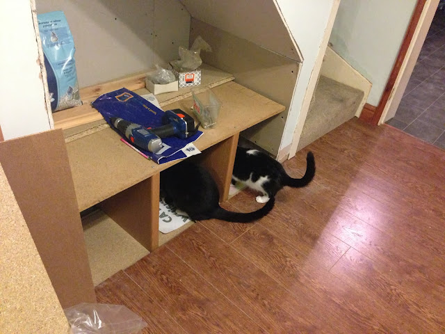 cat feeding area blog post