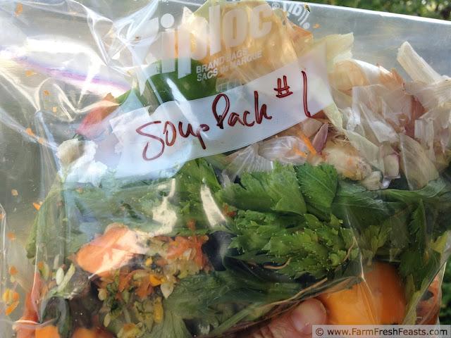 http://www.farmfreshfeasts.com/2012/09/frugal-eco-farm-fresh-feasting.html