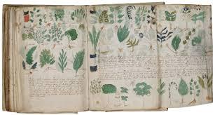 gambar manuscript