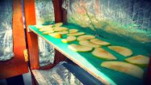 Proyecto deshidratador solar