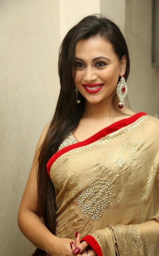 Actress Simran Kapoor Latest Cute Hot Exclusive Saree Navel Show Spicy Photos Gallery