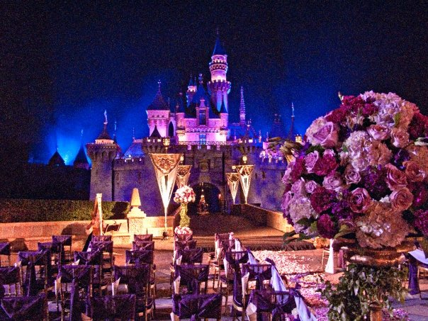 real disneyland weddings brettainy and kyle
