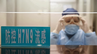 New bird flu H7N9 flu symptoms 2013