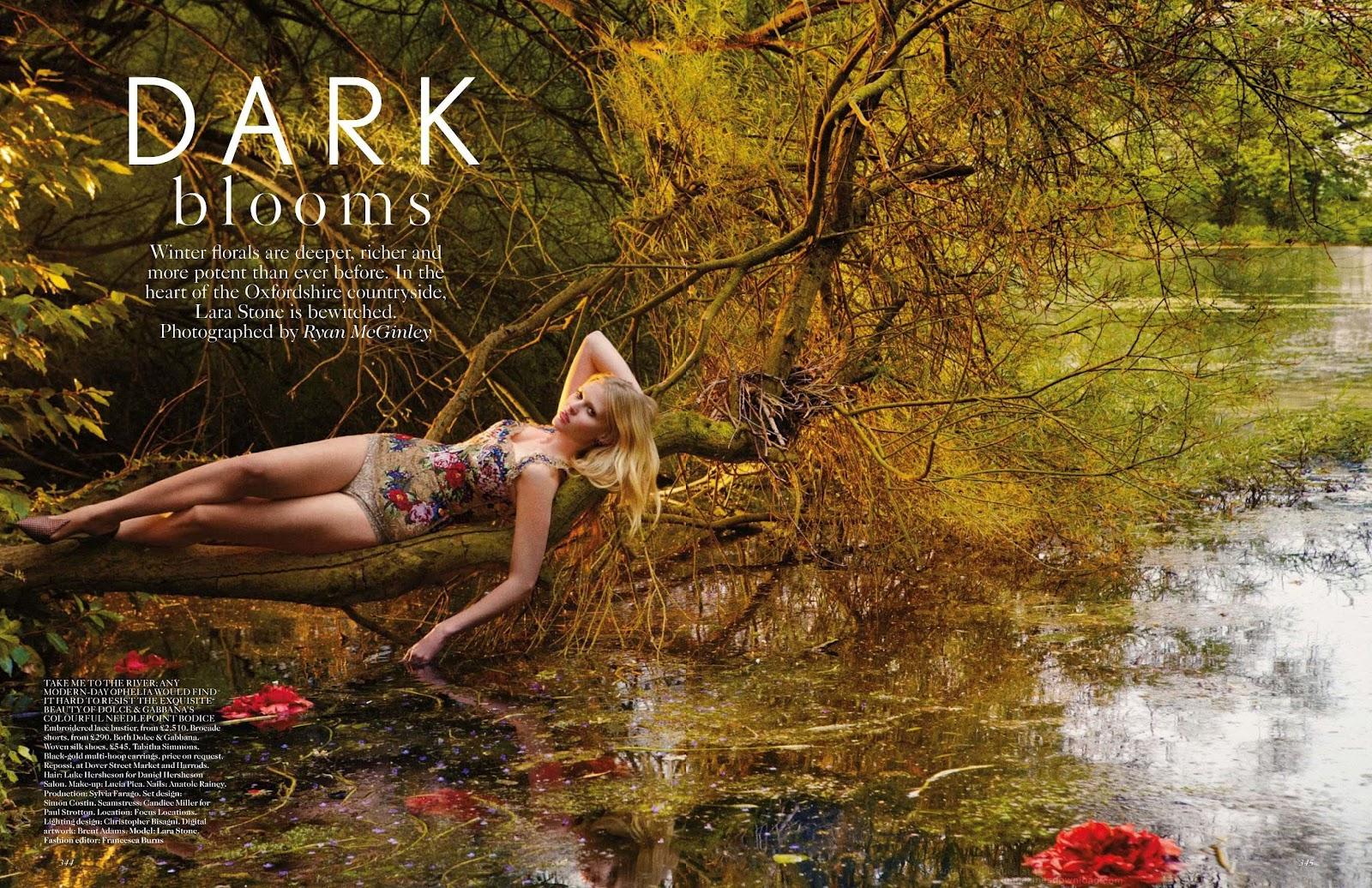 http://1.bp.blogspot.com/-QbASTFNAHm4/UCAz0ld1liI/AAAAAAAAVNc/2TcVtJm1Gjk/s1600/Lara+Stone+-+Vogue+UK+September+2012+1.jpg