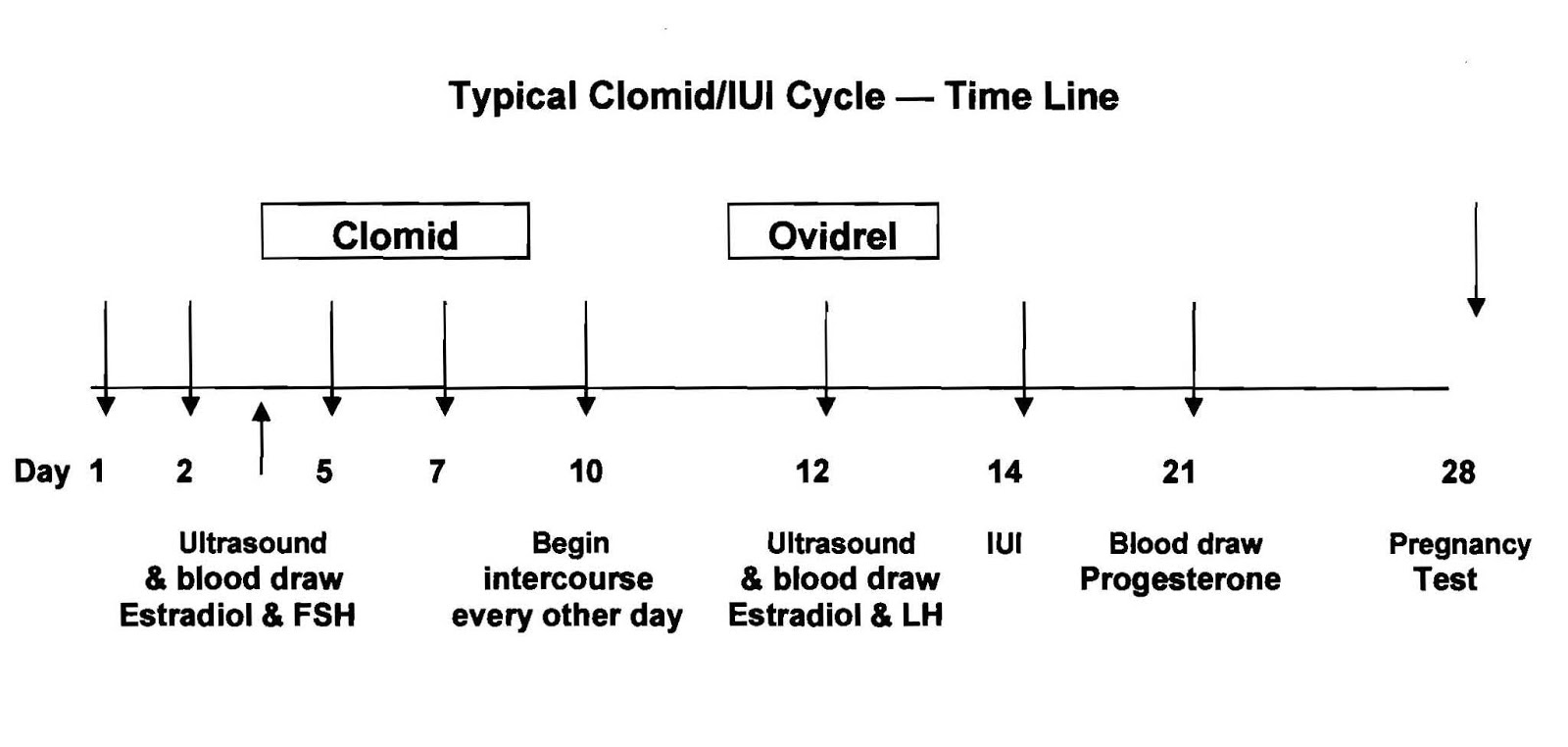 Clomid days 3-7 success stories