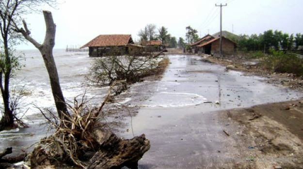 Pejuang Lingkungan Ditengah Pergulatan Abrasi Pantai