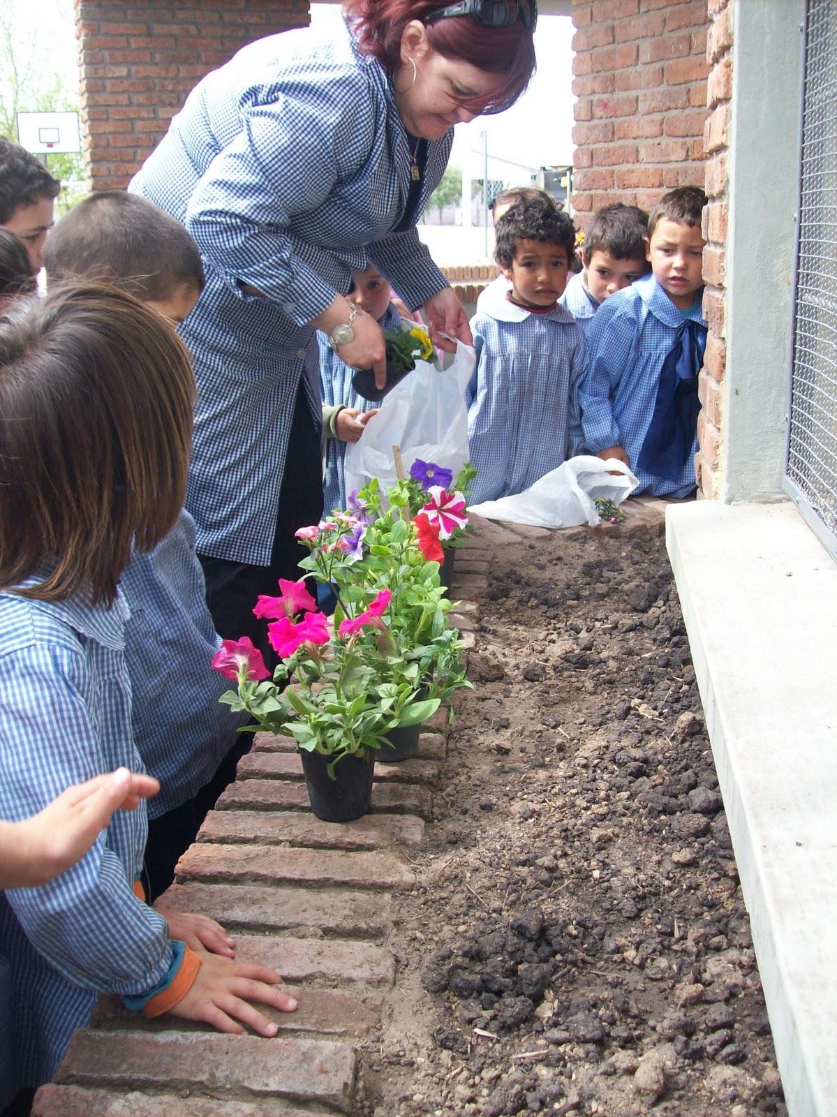 Escuela 86 libertad la escuela se prepara para el for Jardines pequenos para escuelas