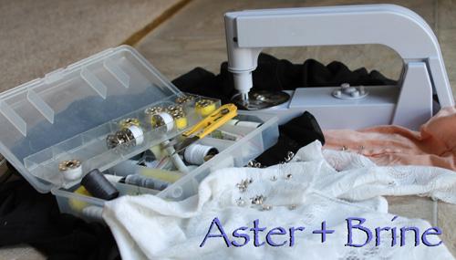 Aster + Brine