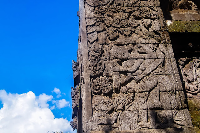 detalles de meduwa karang