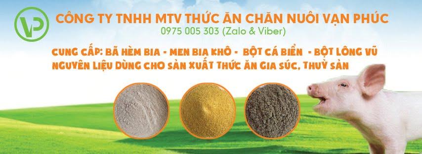 Cần bán Bã hèm bia 50% đạm. Mr Thuận 0975 005 303