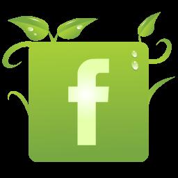 Facebook green.