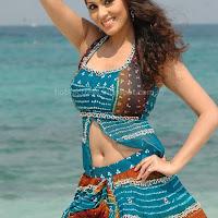 Actress sada hot photo gallery