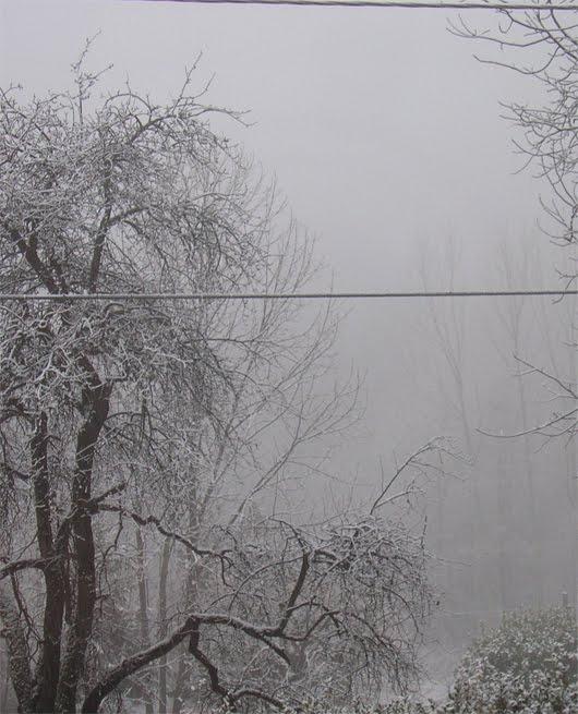 nebbia e neve