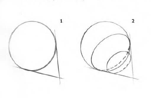 رسم القواكه ,رسم التين بقلم الرصاص